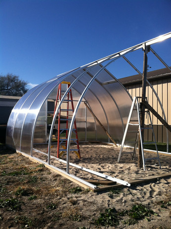 Greenhouse in progress...