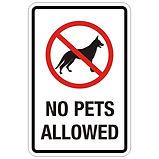 no-pets-allowed1.jpg
