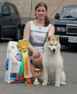 18 May, dog show _Perovo_, Moscow_Best Puppy, BEST IN SHOW PUPPY !!!_Thank you judge V