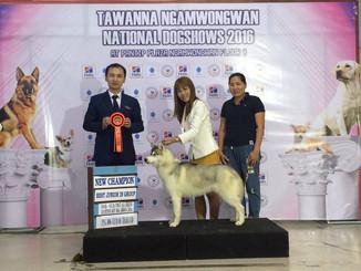 Чемпион Тайланда