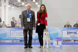 CACIB Russia 2017, BOB Puppy