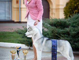 CACIB в Нижнем Новгороде: Опера BIG #3