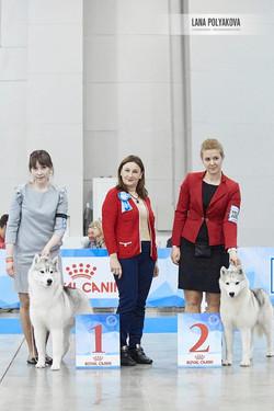 Рони rJunCac на Евразии 2018