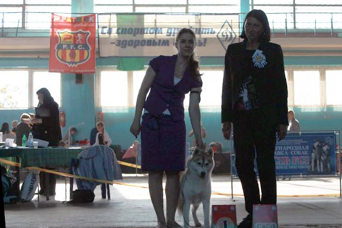 7-8 September, Minsk, Belarus Double CACIB_First dog show in juniors of our chineese princes!__NOBLE