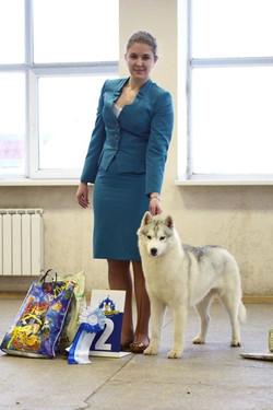 2015_Marahuta Deliver Lily To Husquisher  aka Boosya - 2xJunCac, best junior of breed, r