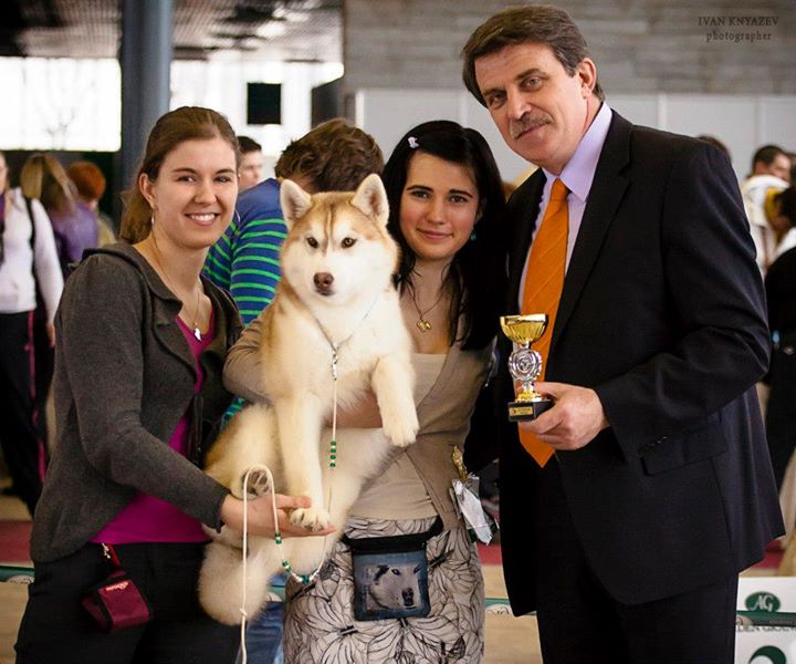 Serena (Noble's Serena JS) got Best Baby in Specialty Show (BISS BABY) _Club Winner_ in Moscow!!!_th