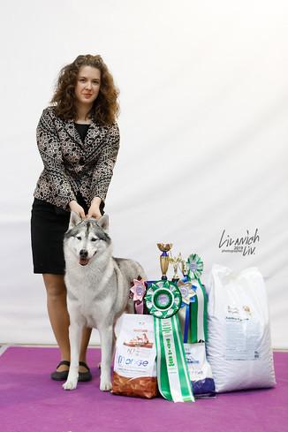 Первый ветеран Чемпион НКП в питомнике