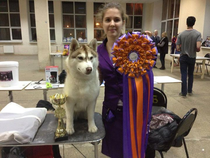 Serena went BEST IN SHOW JUNIOR -2 !!!