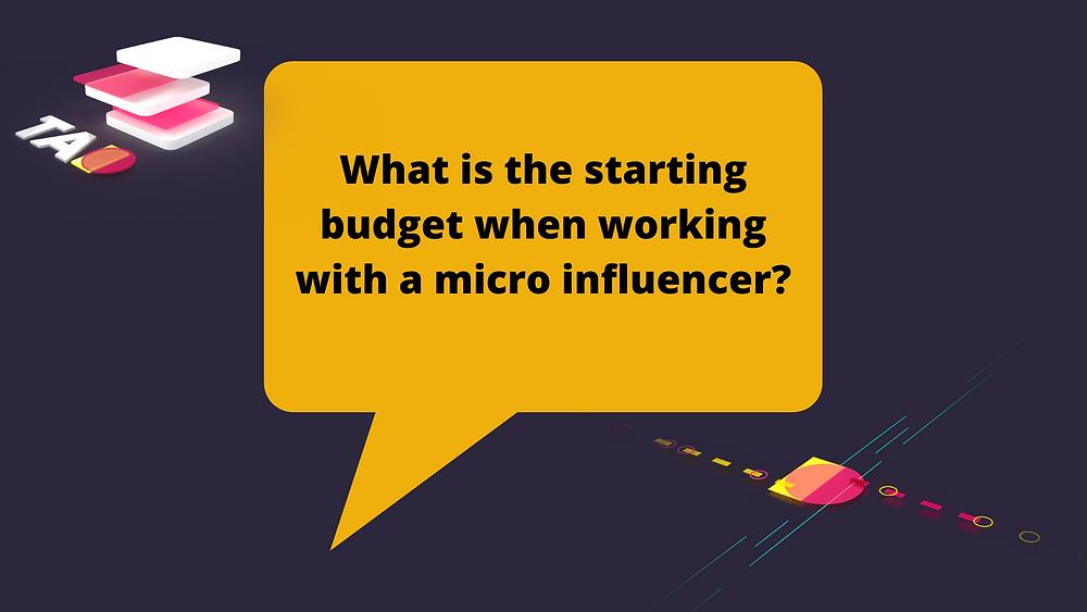 micro influencer budget