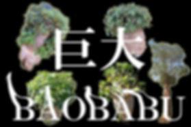 原産地アフリカから直輸入したバオバブの木の販売。太くて立派なバオバブ苗木を取り扱う専門店。「星の王子さま」にも出てくる木はこの「バオバブの木」です。バオバブの木は、サバンナ地帯に多く分布する、高さは約20メートル、直径は約10メートルにも及ぶ巨大な大木。バオバブ(英名:Baobab、学名:Adansonia)はアオイ目アオイ科バオバブ属。果肉は食用・調味料とされ、セネガルでは「サルのパン」と呼ばれる。珍しいバオバブの苗木販売専門店(奥飛騨ファーム)