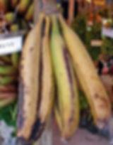 ・Kluai Changバナナ  (Musa Kluai Chang)  1本のバナナがかなり大きい品種のバナナ。タイのローカルなバナナ  人気度:★★