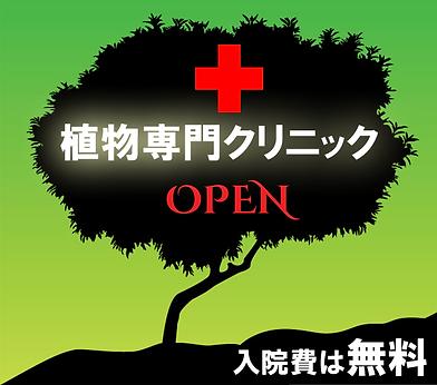 植物専門クリニックオープン 入院費は無料