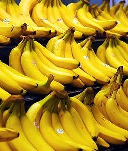 ・キャベンデッシュバナナ  (DWARF CAVENDISH)  食用バナナの代表的な品種。  世界で栽培されている  半数を占めるバナナ  人気度:★★★