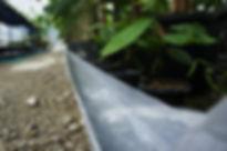 ビニールハウスの中では、苗木に沿って引いた配管を65度の温泉が流れる仕組み。このシステムにより真冬の気温-15度でも温泉ハウス内は常時30度をキープ。ハウス内の自動システムの電力は太陽光により蓄電した電気を利用している。  自然の恵みを頂き、そこから新たな恵みを生み出すエコ栽培だ。数年間の試行錯誤により完成した日本初の温泉湯気栽培。  詳しくはこちら