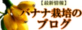 奥飛騨ファームのバナナブログ