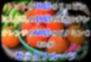 ガックフルーツ苗木の販売