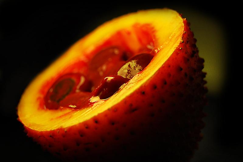 ガックフルーツ(ナンバンカラスウリ・南蛮烏瓜) 学名:Momordica cochinchinensis   ガックフルーツとは豊富な栄養素が含まれたトロピカルフルーツです。 他のフルーツと比べての一番の違いは栄養素のずば抜けた高さ。 βカロティン(ニンジンの10倍)・ リコピン(トマトの約70倍)  天然ビタミンE(アルファトコフェロール) ビタミンA ・ビタミンC(オレンジの60倍)   ゼアキサンチン(トウモロコシの40倍)   まあ、すごいフルーツなんです。 日本では商業的な栽培は行われていません。 (株)奥飛騨ファームでは2012年から商業的大規模栽培に着手しています。 2014年、少量の果実の収穫が順調にすすんでいます。 ※ガックフルーツの種子の売買は日本の薬事法で禁止されています。        収穫・栽培の様子はこちら