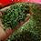 Thumbnail: お得な3個セット・これに勝るお茶はない。飛騨産のパパイヤ茶(パパイヤリーフ)50g×3