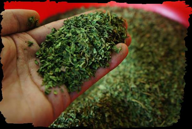 国産無農薬に拘る Organically grown  800mパパイヤ葉茶には一切農薬は利用していません。 誰が飲んでも安心できる国産パパイヤ葉茶です。安心安全は当たり前。