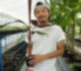【栽培者】  (株)奥飛騨バナナ栽培者は私、滋野亮太といいます。  植物が大好きで始めたバナナ栽培。バナナが好きという気持ちは誰にも負けません。本格的にバナナ栽培する前から多数の品種のバナナを趣味で育てていました。気づいたらバナナの魅力に引き込まれていました。栽培農家「奥飛騨ファーム」は私一人で立ち上げ今に至る。もちろん家族の支えを受けて。  飛騨高山の認定農業者として責任をもって栽培に取り組んでいます。