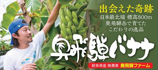 奥飛騨ファームが完全無農薬、有機栽培で育てた究極の奥飛騨バナナ。水は北アルプスの天然水を利用。栽培は温泉栽培で育てた。こんな最高な環境で育ったバナナは世界でもここだけ。味は甘みが強くもちもち感がある。安心安全なバナナとはまさにこれこのことだ。数年の試行錯誤で完成した糖度が高い究極のバナナ登場