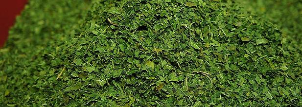 ずば抜けたポリフェノール 飛騨産のパパイヤ葉茶には100gあたり3300mgのプリフェノールが含まれています。ポリフェノールと言えばブルーベリー。  それでも100gあたり250mg程度。  ずば抜けたポリフェノールの量が飛騨産のパパイヤ茶には  含まれています。これほどポリゲノールが含まれている茶はないでしょう。      ノンカフェイン/便秘解消 パパイヤ葉茶にはカフェインは含まれません。  ノンカフェインです。  ビタミンC・カロテノイド・フラボノイドなど  抗酸化作用を豊富に含む。  パパイヤ葉茶に含まれるリンゴ酸、ペクチンの整腸作用により便秘を 解消する効果があると言われている。  パパイン酵素は炎症を鎮めアレルギー症状を解消すると言われているためアレルギー症状解消にも効果が見込めそうです。      民間治療でも利用 タイでは昔からパパイヤ葉茶は民間治療として利用されています。日本でも抗がん効果があるとクリニックで提供しています。それだけ効果が見込める植物でもある。 コレステロール分解にも効果があると言われ糖尿病・高血圧などの症状改善もある。      デング熱に効く? インドやマレーシアでは政府がパパイヤの葉を治療に使い、国立大学で無料で治療を行ったりしている。  デング熱に感染すると血小板の値が下がり、肝臓の機能が低下するそうです。それに対する特効薬はなく、パパイヤ葉のエキスを摂ると血小板、肝臓共に正常になっていくと報告されています。    http://www.sundayobserver.lk/2010/07/25/fea02.asp  詳しくはこちらに記載されています