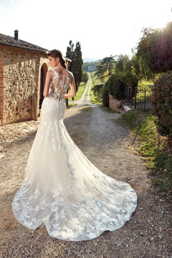 Wedding Gown Beautiful Back