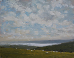 Sheep over looking Lyme Bay