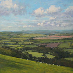 View from Eggardon Hillfort