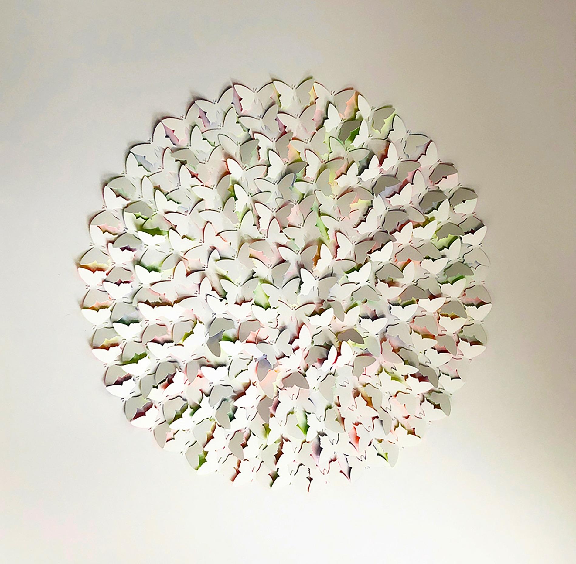 Butterflies 60 x 60