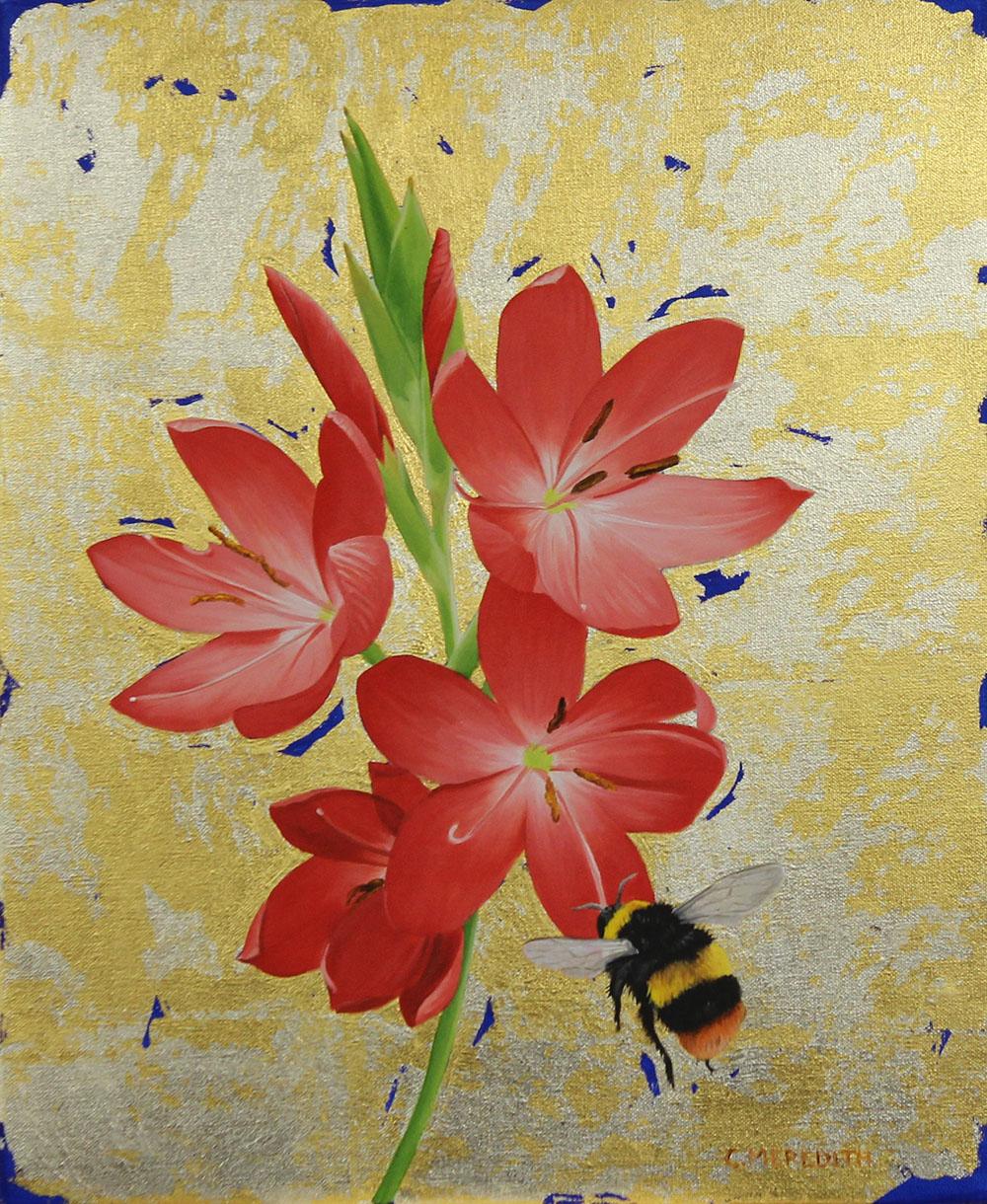 Kaffir Lily & Early Bumblebee