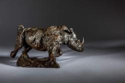 Freedom, Charging White Rhino