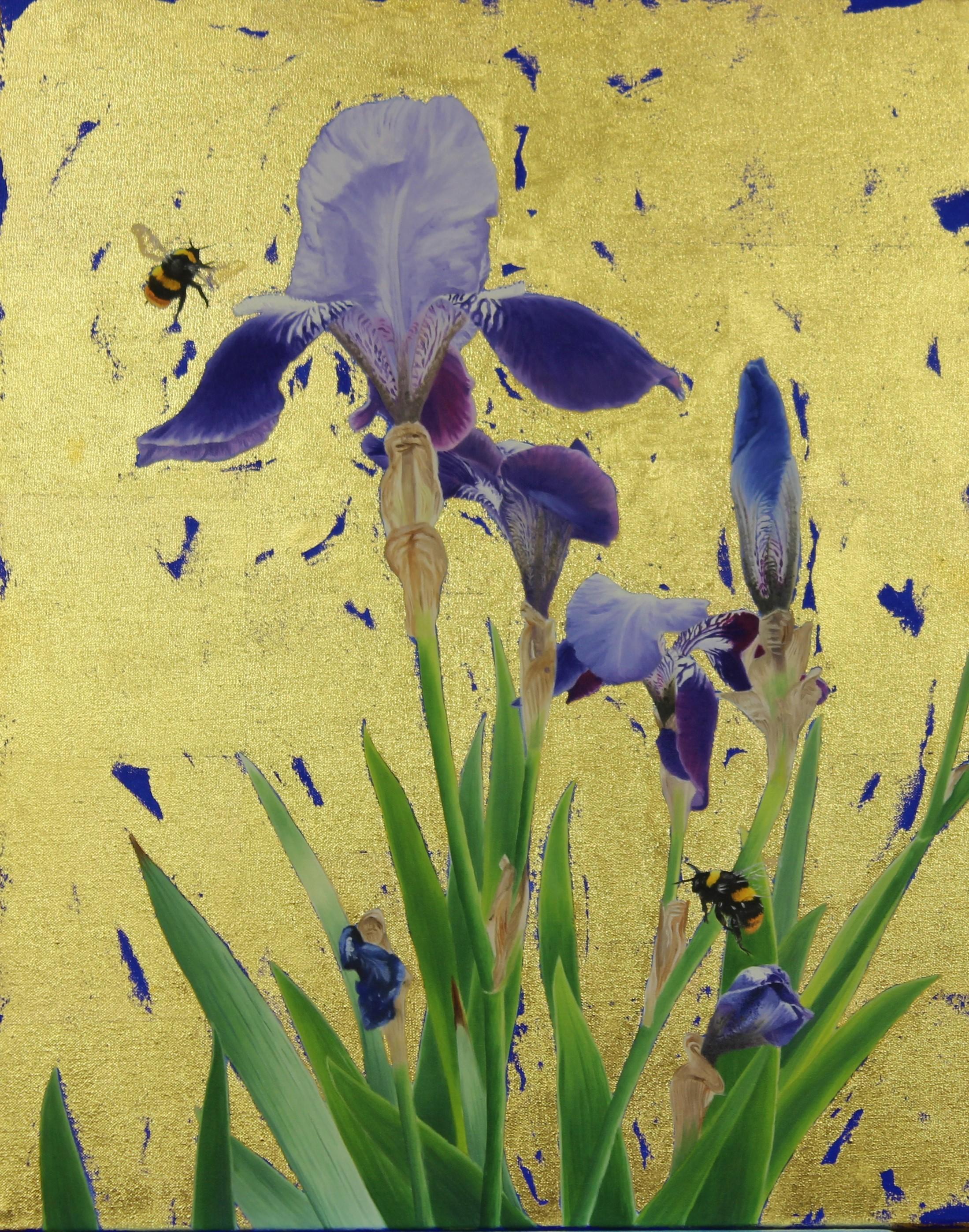 Bearded Iris & Early bumblebees