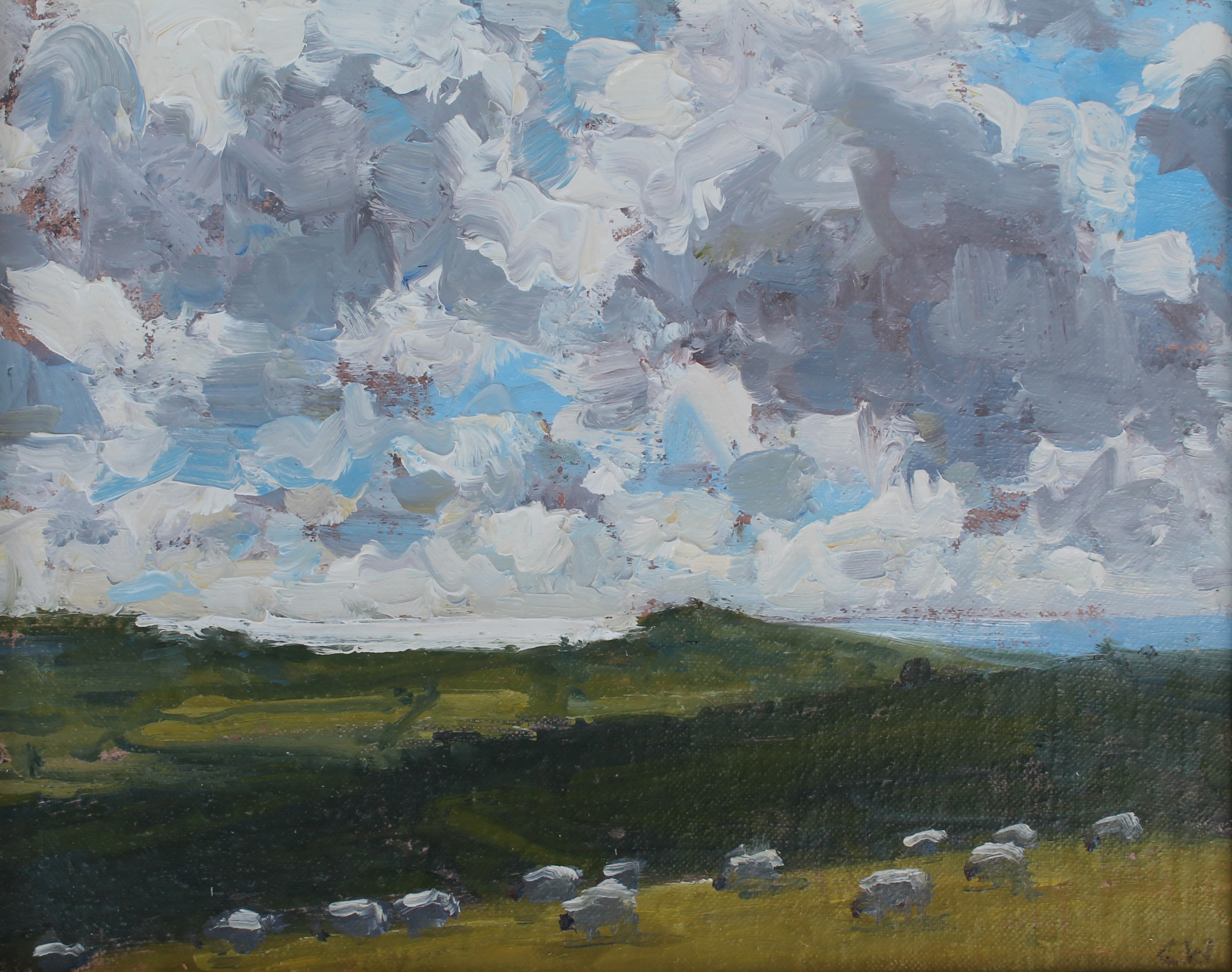 Sheep Grazing near Litton Cheney,