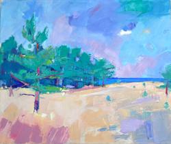Coastal Pinewood