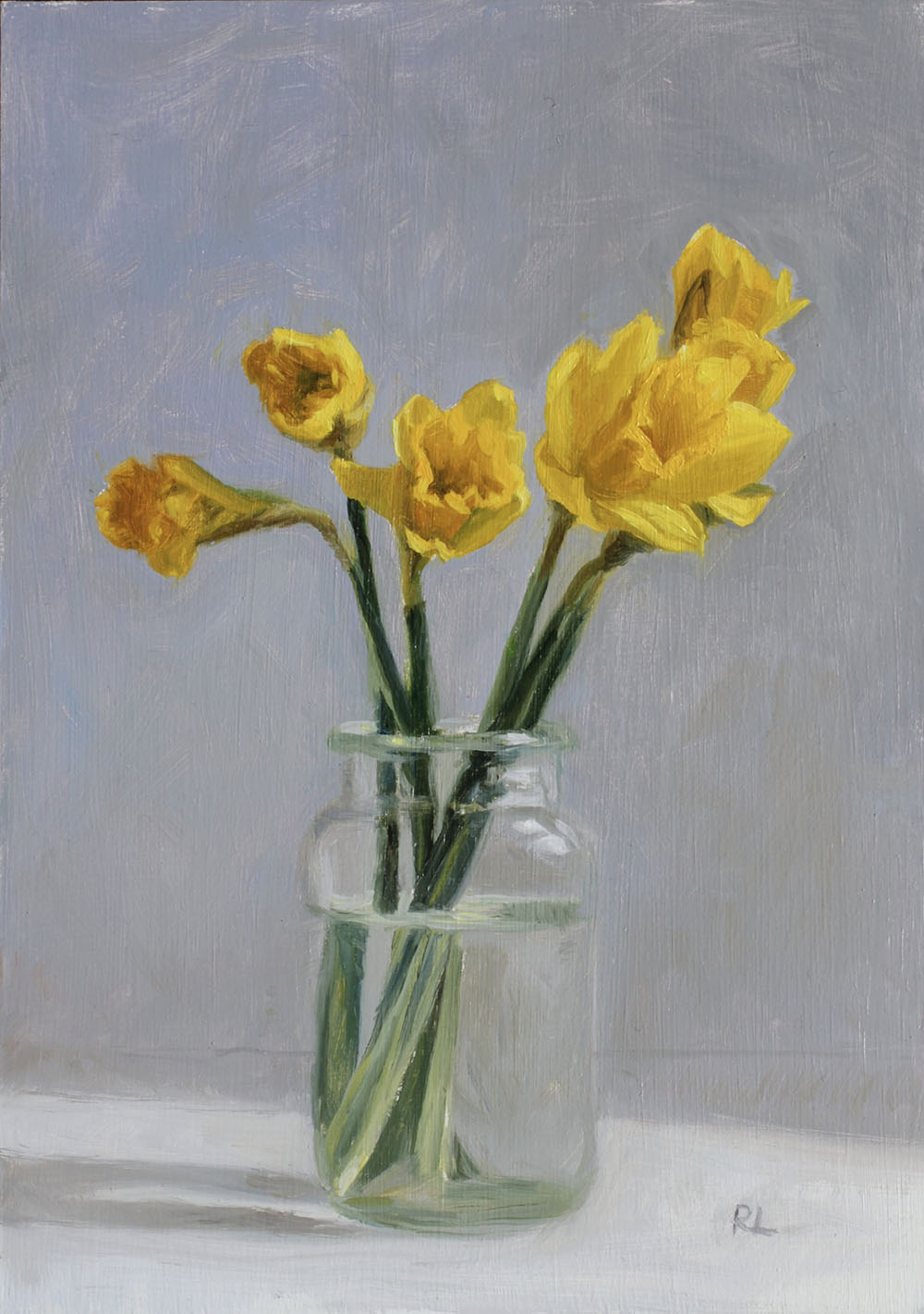 Daffodils Opening