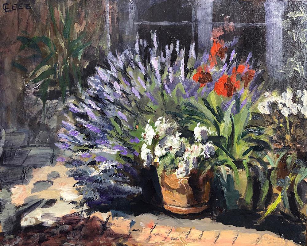 Lavender in Sun