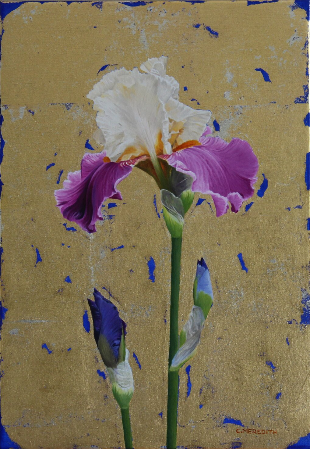 Iris, Full of Magic