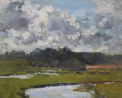 Cows grazing in Dorset Watermeadows