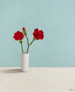 Accidental Carnation