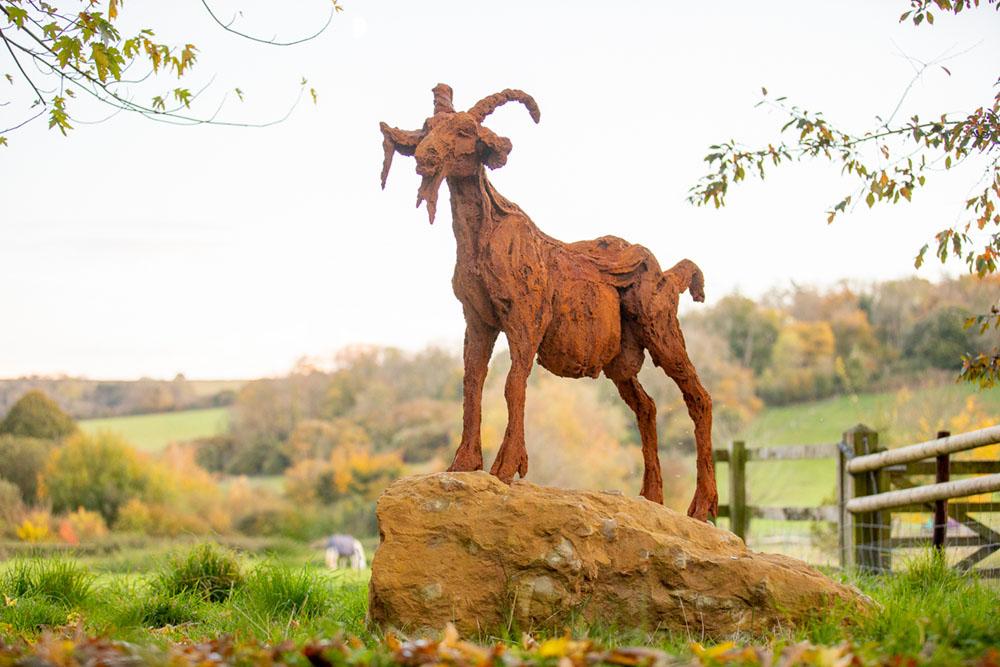 Sherlock, Large Mountain Goat