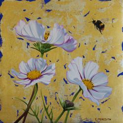 Cosmos Trio & Early Bumblebee