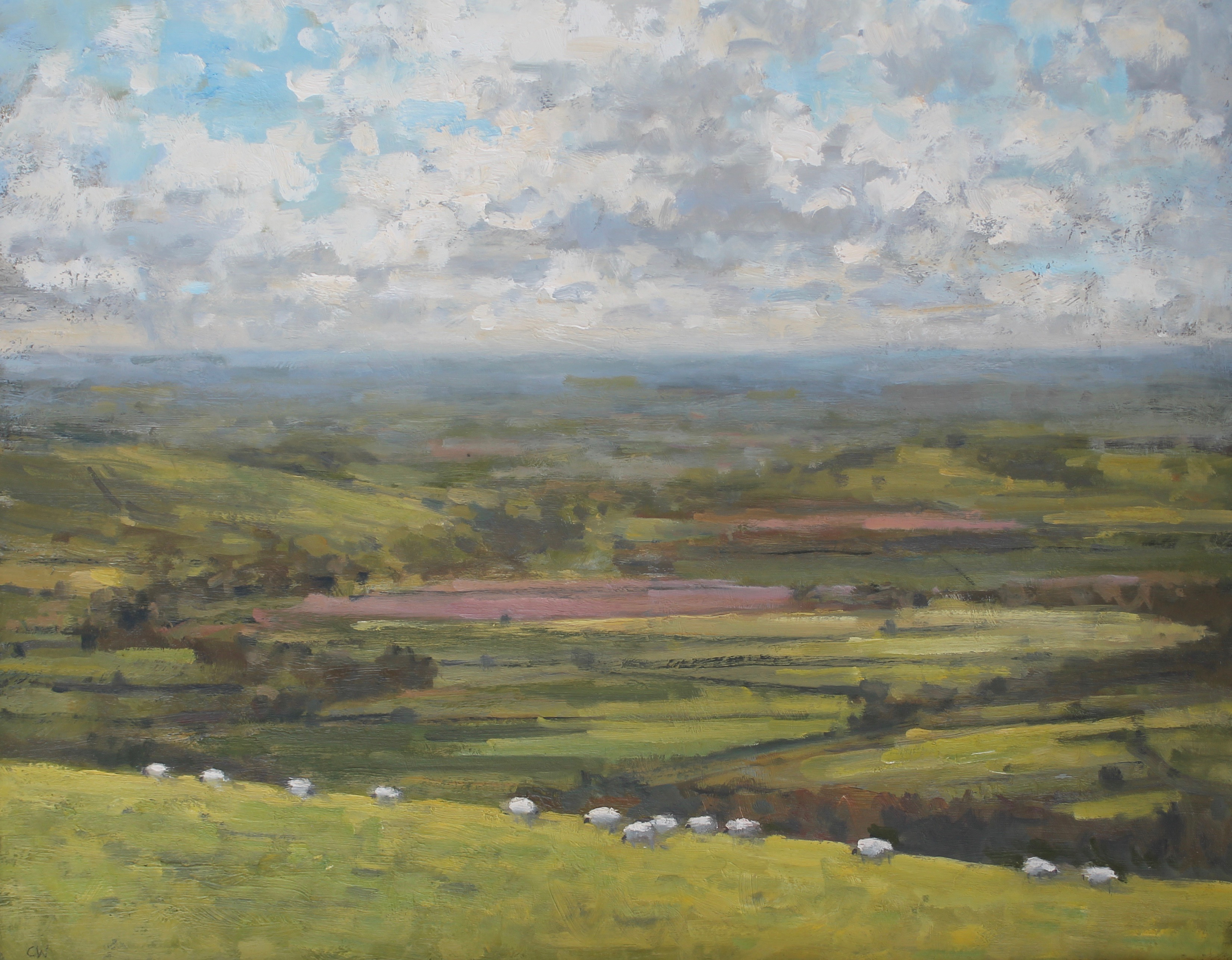 Sheep Grazing on Eggardon