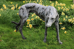 Gentle Thoughts, Standing Lurcher