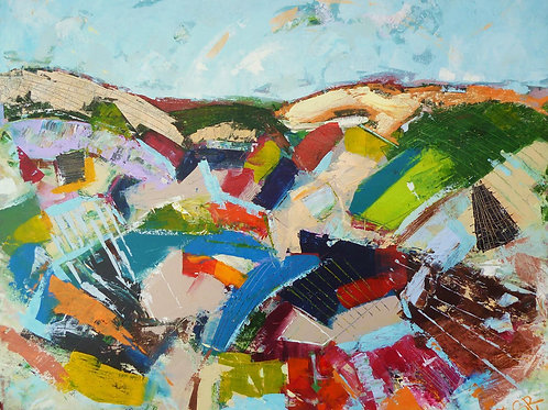 Sunshine on the Fields, Steve Williams