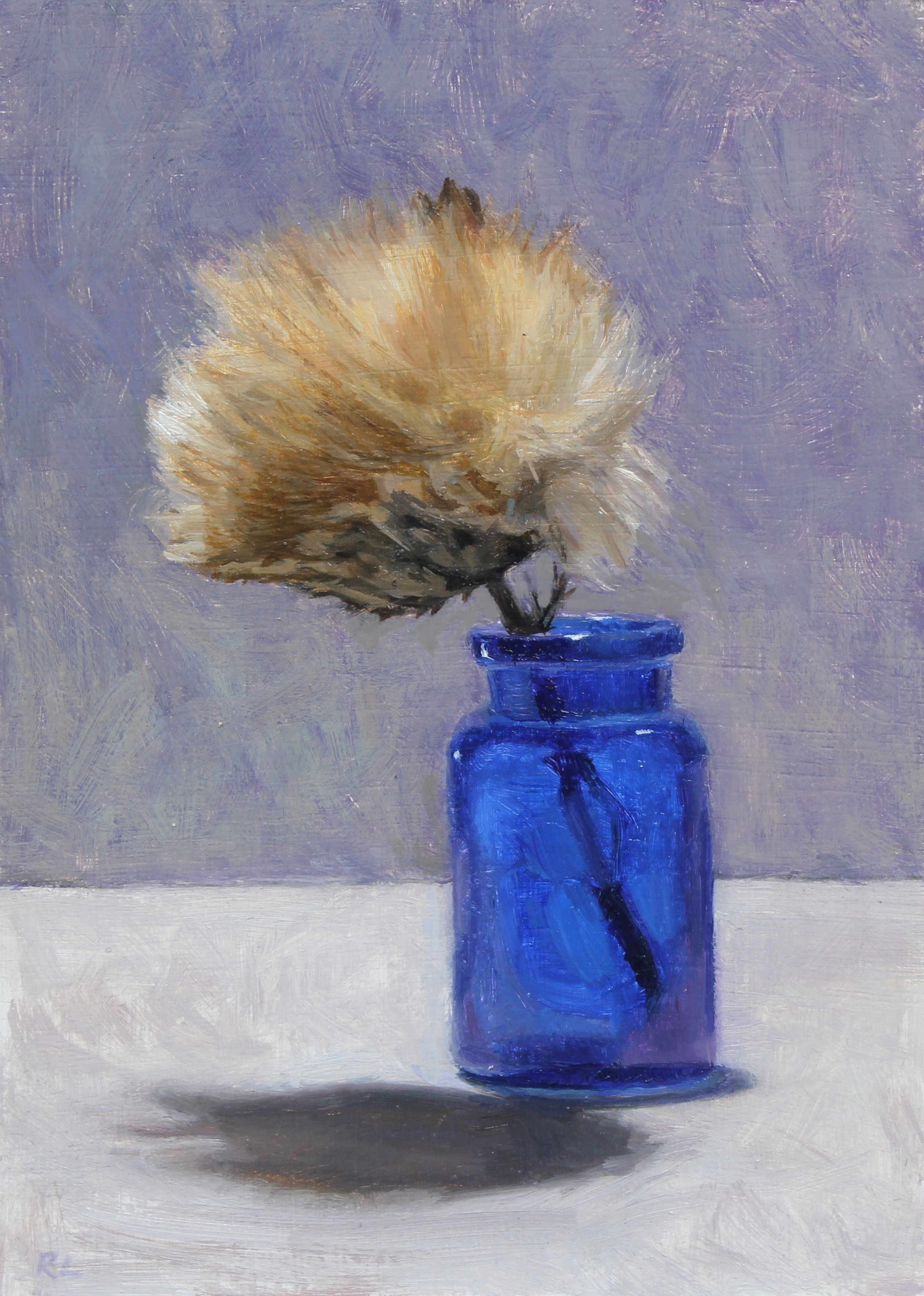 Cardoon Seed Head in a Blue Jar