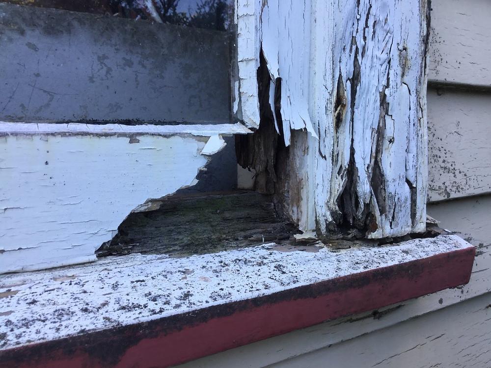 Window maintenance neglect