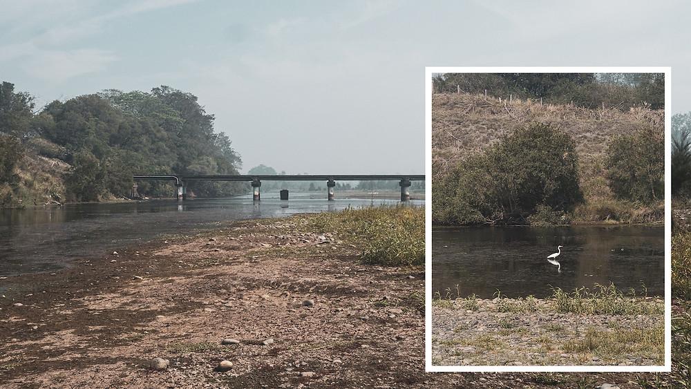 Sherwood Bridge, Maclay river. Drought, NSW.
