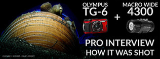 Olympus-TG-6-MW-4300-James-Emery-Banner-