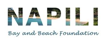 napili bay foundation